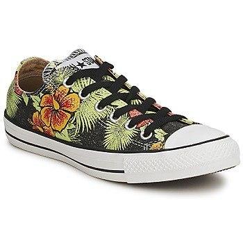 converse havaian