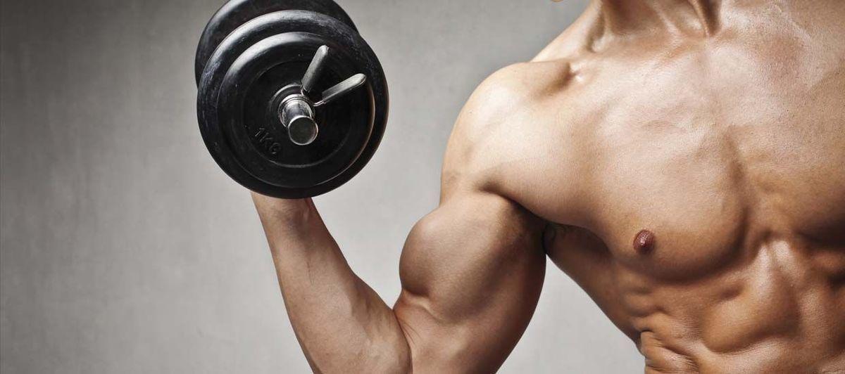 como-tonificar-y-definir-biceps-triceps-brazo