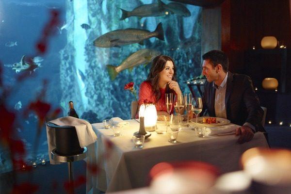 san-valentin-2016-cena-en-acuario