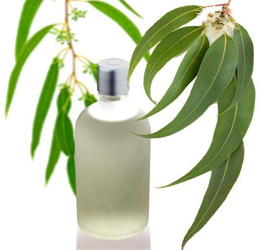 como-hacer-crecer-la-barba-tratamientos-naturales-aceite-de-eucalipto