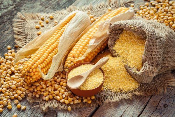 Remedios cabello graso harina maiz