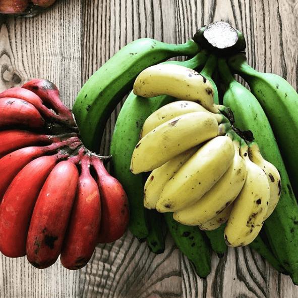 Alimentos con Biotina para pelo perfecto platanos